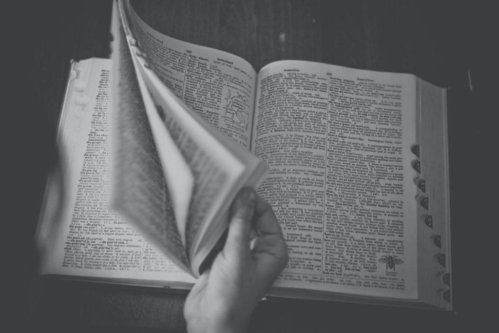 Hangi Dili Öğrenmeli