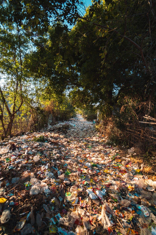Plastik Kullanımı